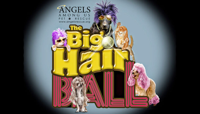 Big Hair Ball logo